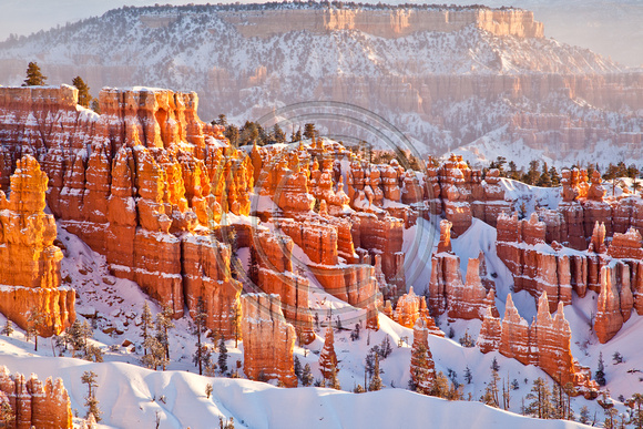 Bryce Canyon, Winter 11